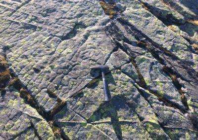 Grès carbonifères (310 Ma)